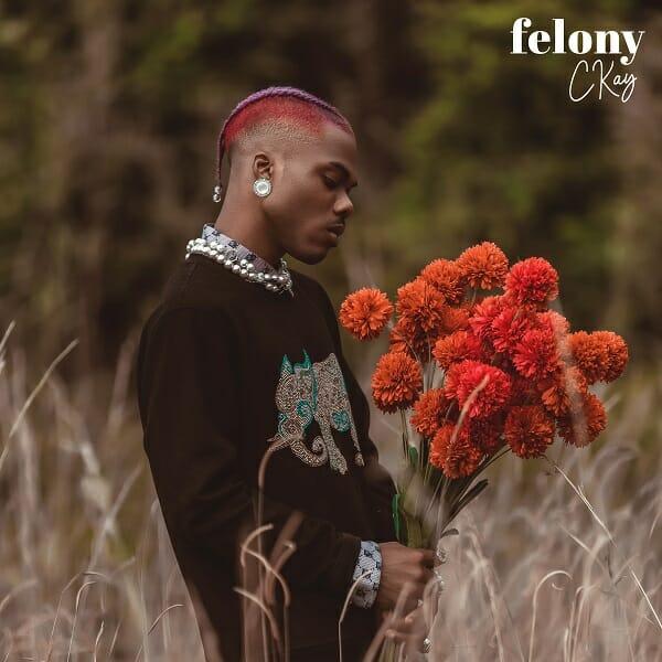 Ckay Felony 1