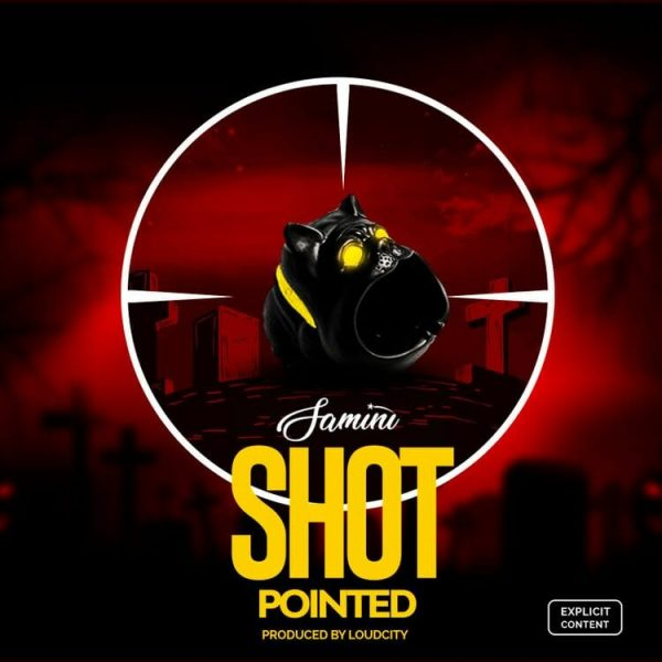 Shot Pointed