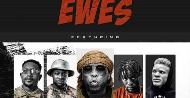 Ewes by edem