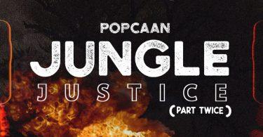 Jungle Justice Part Twice