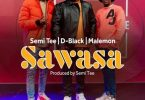 D Black – Sawasa ft Semi Tee x Malemon mp3 image