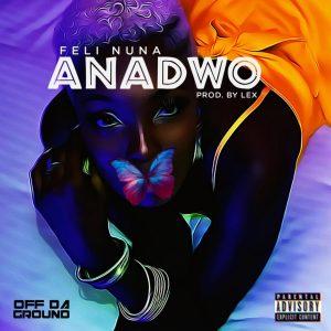 Feli Nuna – Anadwo mp3 image