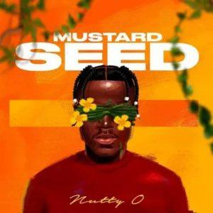 Nutty O Ft Stonebwoy – Success Hitz360 com mp3 image