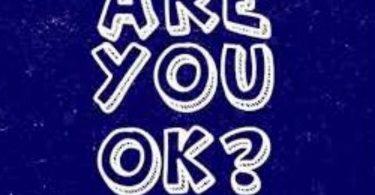 Shatta Wale Are You Ok mp3 image