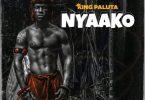King Paluta – Nyaako Hitz360 com mp3 image