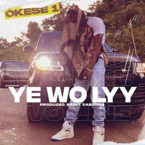 Okese1 – Ye Wo Lyy Hitz360 com mp3 image